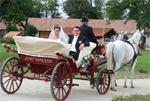 Венгерская свадьба
