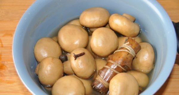 Салаты с грибами на новый год 2021